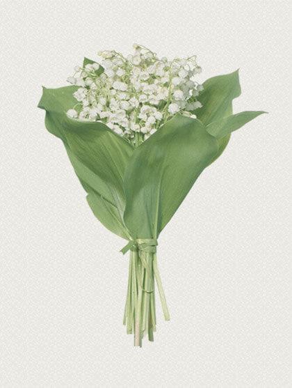 home_flower_bouquet1